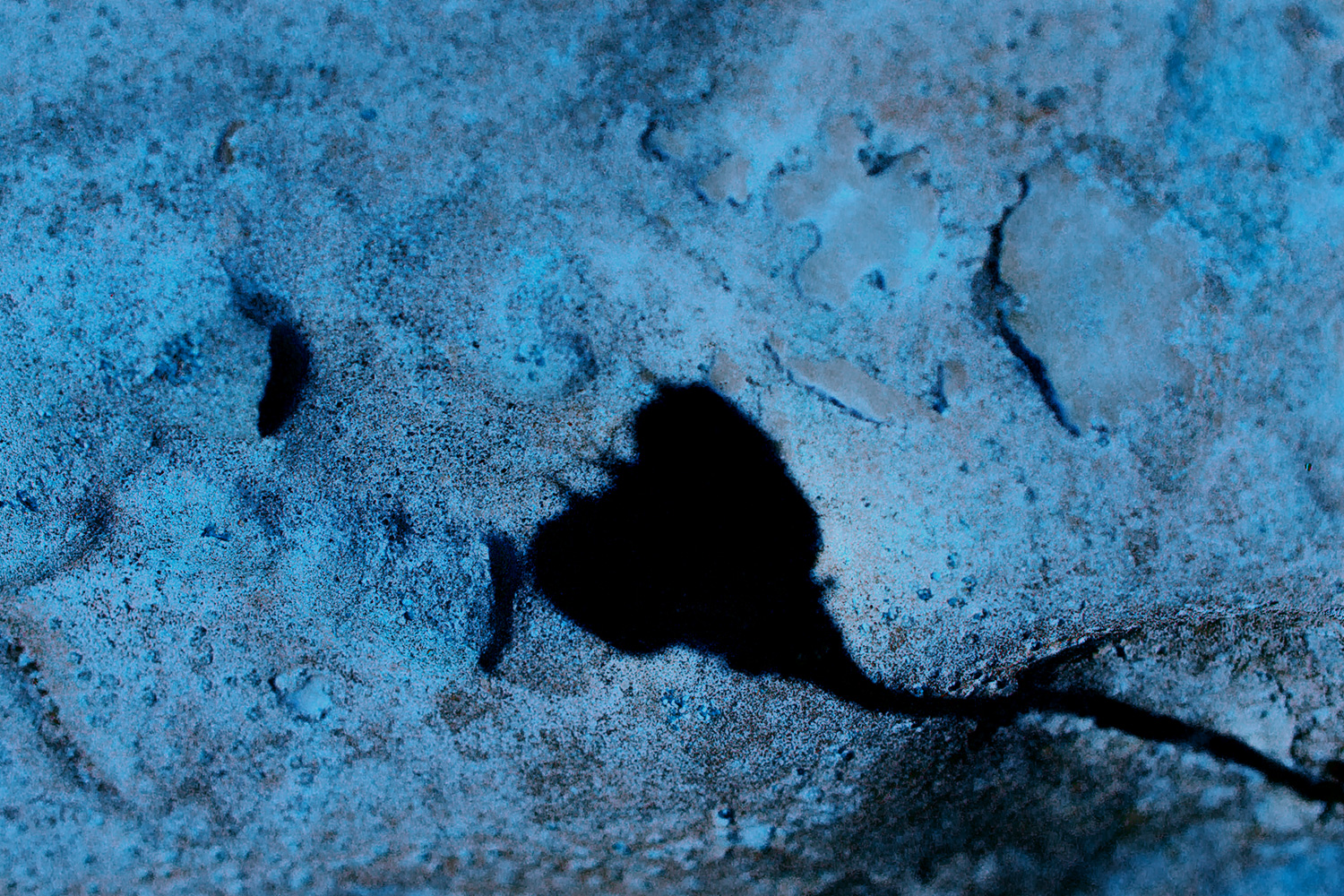 A Summer Silhouette on a Rock in Blue
