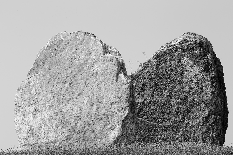 Two Captivated Rocks in a Rocks Garden, Tel Aviv